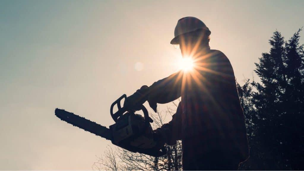 Tödlicher Arbeitsunfall im Wald in Eningen