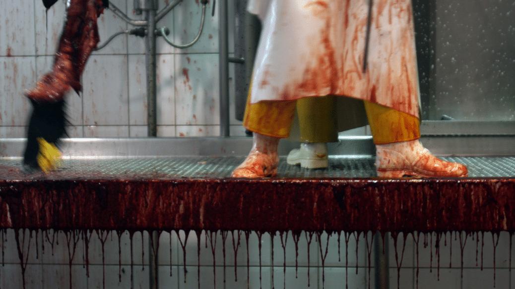 Corona in Schlachthöfen: Zeitarbeitsfirmen klagen gegen Arbeitsschutzkontrollgesetz